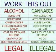 Cannabis (commonly called pot, ganja, weed, marijuana, etc.) is the most diversely effective and efficient medicine known to… Weed Facts, Marijuana Facts, Marijuana Funny, Medical Marijuana, The Cure, Work This Out, Endocannabinoid System, Cancer Cure, Smoking Weed