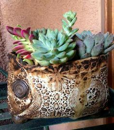 Donna Davis Taylor pot by Noelle Carroll