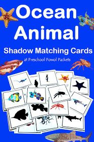 Super Cute Ocean Animal Shadow Matching Cards Free And Perfect For Preschool Or Kindergarten Activities, Centers, Or Stations Preschool Science, Preschool Lessons, Kindergarten Activities, Preschool Director, April Preschool, Math Literacy, Vocabulary Activities, Free Preschool, Preschool Crafts
