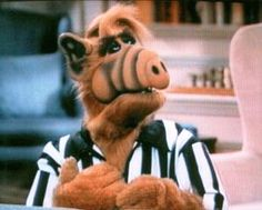 The producer behind The Smurfs and Paul Fusco, the star of the original sitcom ALF, are prepping to bring the show to the big screen. 80s Kids Shows, 80 Tv Shows, 90s Kids, Humor Mexicano, Alien Life Forms, Funny Quotes, Funny Memes, Hilarious, Old Tv