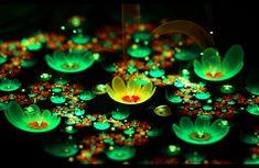 Spring Magic Pond... by FeliFee