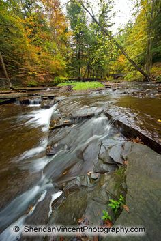 Photograph Images and Panorama Views of Rochester, NY and Region Ny Parks, State Parks, Beautiful Park, Beautiful Places, Letchworth State Park, Wolf Creek, Camping 101, Finger Lakes, Summer Travel