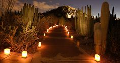 50 awesome things to do in AZ - would be fun for some date ideas!