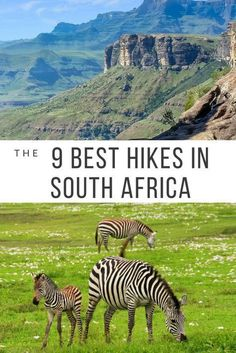 South Africa has some of the best hikes in the entire world. Here are the 9 best hikes in South Africa You Won't Want to Miss. Africa Destinations, Travel Destinations, Travel Tips, Travel Ideas, Travel Goals, Travel Essentials, Budget Travel, Cape Town, Trekking