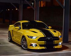 Mustang…Nothing Mellow Yellow about this Pony ! : Mustang…Nothing Mellow Yellow about this Pony ! Ford Mustang Shelby, Mustang Cars, Ford Gt, Us Cars, Sport Cars, Yellow Mustang, Top Luxury Cars, Pony Car, Mellow Yellow