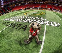 Big Al At The 2018 National Championship Football Field At The Mercedes-Benz Stadium In Atlanta, Georgia #RTR2018