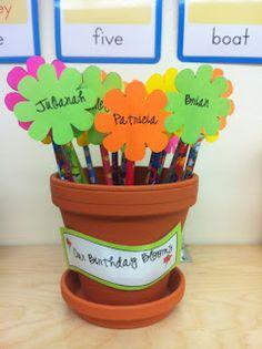 Bright Concepts 4 Teachers: Birthday Flowers