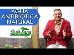 SS14   AGUA ANTIBIÓTICA NATURAL   LUIS ANTONIO MELÓN GÓMEZ - YouTube Natural Herbs, Youtube, Breast, Healthy, Nature, Tips, Frases, Natural Antibiotics, Natural Remedies