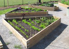 The Design Of The Garden Beds Was Done By A Student.