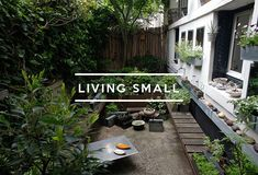 Table of Contents: Living Small ; Gardenista -Photograph by Natalie Weiss. For more of this tiny courtyard garden, see Private Paris: At Home with Artist Cecile Deládier.