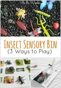 An Insect Sensory Bin with 3 Ways to Play is a fun way to introduce toddlers and preschoolers to different bugs! | Stir the Wonder