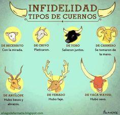 #frases #espanol