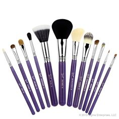 Make Me Crazy Essential Kit! Omg i need these in my life! I have the mrs. Bunny kit but i decided i need these brushes too!