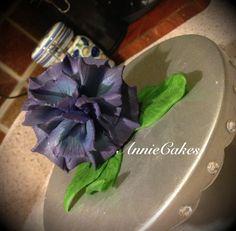 Attempting the Datura (purple)
