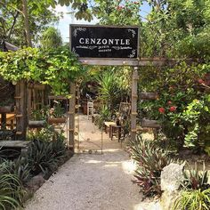 If you come to Tulum, don't miss having dinner here at Cenzontle Secret Garden. Great food and charming atmosphere.
