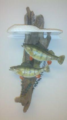 Ice fishing mounts   Ice Fishing   Hot Spot Outdoors - Ice Fishing Reports & Hunting