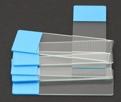 SEOH Microscope Colored End Label Microbiology Slides Blu... #Microscope #Science #Education