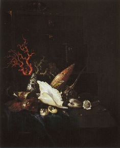 Willem Kalf - Still Life with Coral and Shells