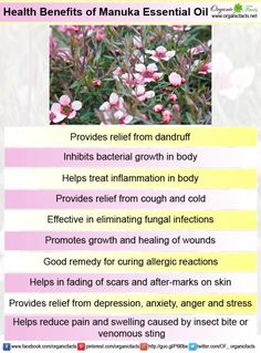 manukaessentialoilinfo2lots of good properties: inhibits baterial growth, anti fungal, promotes healting fades scars