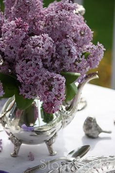 ༺♡༻ Fabulous ༺♡༻, chasingrainbowsforever:   Lilacs and Silver ~ From...