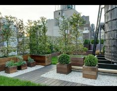 Anderson Cooper's New York rooftop garden. You can see one of New York's iconic water towers to the right. What a great use of space. Another story of New York. Biddy Craft #RooftopGarden