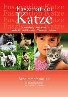 Infomaterial Katze