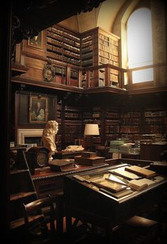 Home Library Design, Dream Library, Beautiful Homes, Beautiful Places, Brown Aesthetic, Aesthetic Pictures, Future House, Light In The Dark, Aesthetic Wallpapers