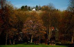 Noch ist der April gar nicht gekommen, ... und die ersten Bäume haben schon seit `ner Weile ausgeschlagen. Da müssen wir wohl das Lied etwas abändern. Nicht nur in Merzig.  :-)