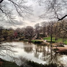 Duck Pond, Central Park