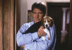 Harrison ford & Beagle- Ok, I have to admit, I'm not a beagle fan. Harrison Ford, on the other hand. Harrison Ford, Cute Beagles, Cute Dogs, I Love Dogs, Puppy Love, Beagle Puppy, Make Me Smile, Pop Culture, Dog Cat