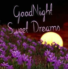 Good Morning Have a Nice Day Pics : Good Morning Photos, Good Morning Images, Good Morning Quotes, Good Morning Wishes Wallpaper for whatsa. Lovely Good Night, Night Love, Good Night Sweet Dreams, Good Morning Good Night, Nice, Good Night Images Hd, Beautiful Good Night Images, Good Morning Photos, Beautiful Pictures