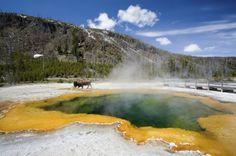 Yellowstone National Park in Wyoming, Verenigde Staten
