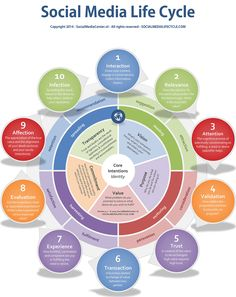 Social Media Life Cycle - Social Media Center | #infographic