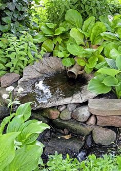 Kuvahaun tulos haulle vesiaihe