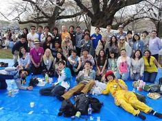 Hanami at Yoyogi Park - OfJapan events (Tokyo) - Meetup. Join us.