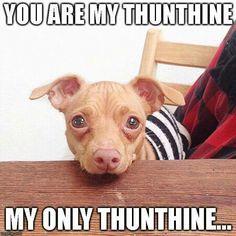 Thunthine