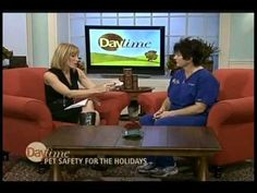 Dr. Melissa Webster of Tampa Veterinary Hospital shares Holiday Tips for...