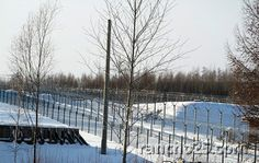 wire mesh security perimeter fence for oil & gas and military purpose www.rancho25.com