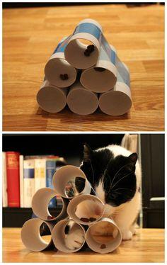 Make cat toys yourself - 65 sparkling ideas and examples - Katze - Katzen Homemade Cat Toys, Diy Cat Toys, Dog Toys, Cat Puzzle Feeder, Diy Jouet Pour Chat, Cat Hacks, Hacks Diy, Cat Crafts, Cat Furniture