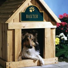 The Pet Collection. Offering Personalized Pet name plaques and Memorial Markers for Dogs or Cats Fancy Dog Houses, Cool Dog Beds, Best Dog Training, Pet Paws, Dog Runs, Dog Paintings, Dog Names, I Love Dogs, Best Dogs