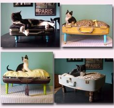 DIY Pet Bed Using A Suitcase - Find Fun Art Projects to Do at Home and Arts and Crafts Ideas