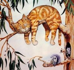Love-sepphoras: Funny Cats by Gary Patterson