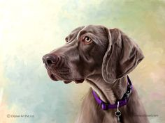 Adorable digital portrait #painting for #dog. Contact us for creating such a beautiful digital paintings for your pet/animal. #AnimalPainting