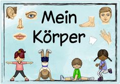 """Weitere Plakate für den Sachunterricht Heute gibt es die nächsten Plakate für den Sachunterricht zu den Themen """"Eulen"""" bzw. """"Mein Körper..."""