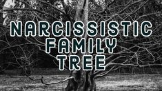 The relationship a narcissist has with his or her family might help to explain their behaviors, patterns and personality.  Do they act like a parent? Do they talk to their family? Are they hiding crazy or are they the crazy one that the family has walked away from?