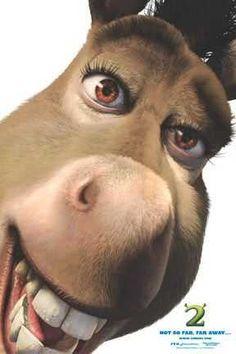 "Donkey in ""Shrek"" Cartoon Jokes, Cartoon Characters, Burro Do Shrek, Shrek Donkey, Dreamworks, Fiona Y Shrek, Pixar, Cute Christmas Wallpaper, Funny Profile Pictures"