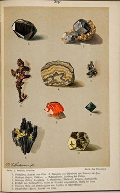 Gürich Georg Julius Ernst (no date ca Crystal Illustration, Antique Illustration, Nature Illustration, Botanical Illustration, Minerals And Gemstones, Rocks And Minerals, Grafik Design, Art Techniques, Botanical Prints