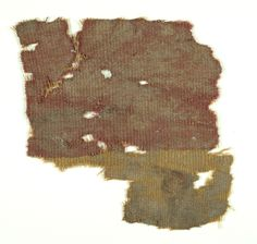 Dye extracted from murex snails was used to make expensive purplish dyes in ancient times.