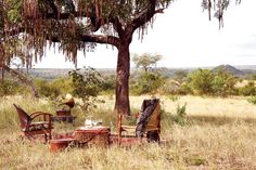 South Africa Safari Style