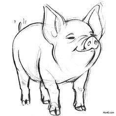 Looks like Wilbur (800×800)
